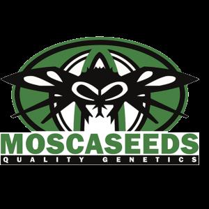 Mosca Seeds logo
